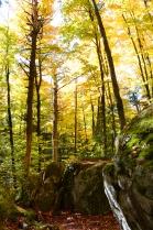 Centennial Ridges Trail