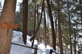 trails6